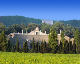 hotels of vaison la romaine